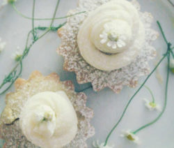 muffin_camomilla_1